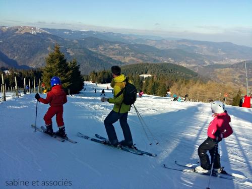 skier-vosges.jpg