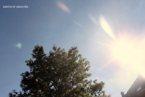 soleil1.jpg