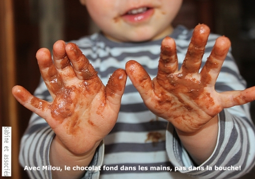 milou_chocolat.JPG