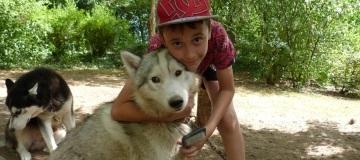 new_min_sejour-colonies-de-vacances-chiens-calins-2009-1.jpg