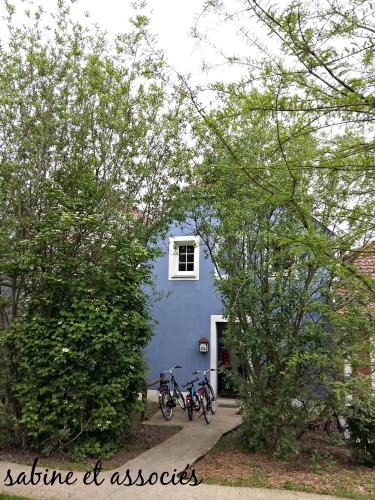 cottage-ailette.jpg