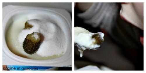 yaourts-cornichons2.jpg